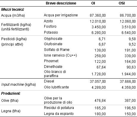 business plan oliveto superintensivo